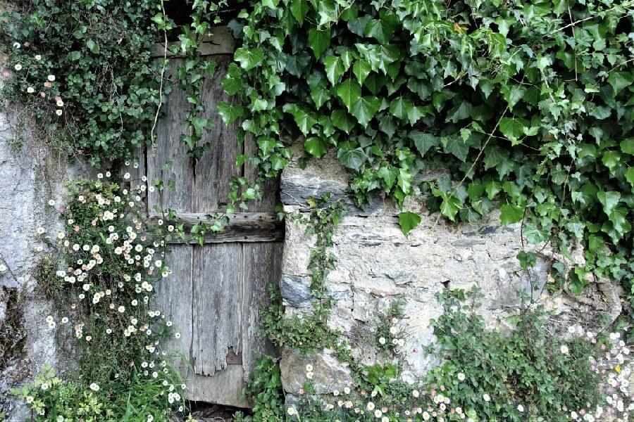 Enchanted doorway in Pigna